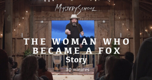 The Woman Who Became a Fox Story by Martin Shaw