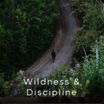 wildness & discipline